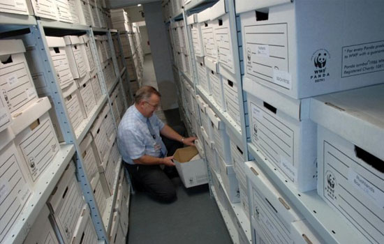 Office Archive Storage